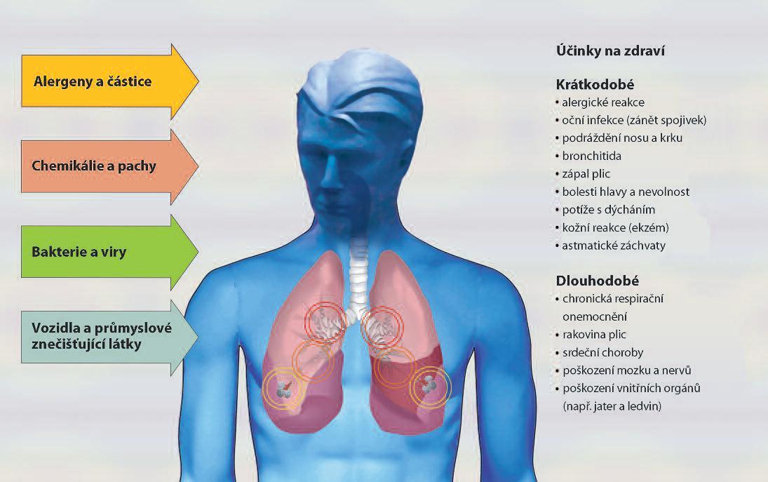 Znečištění ovzduší - účinky na zdraví