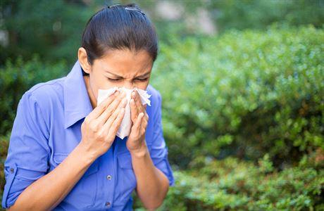Čistička vzduchu IQAir je jednička pro alergiky a astmatiky